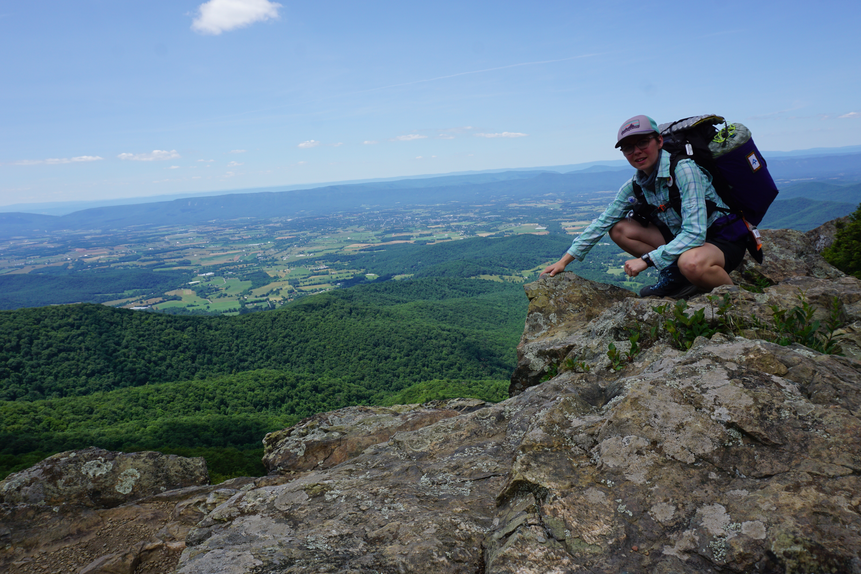 Rocky tries hitch-hiking